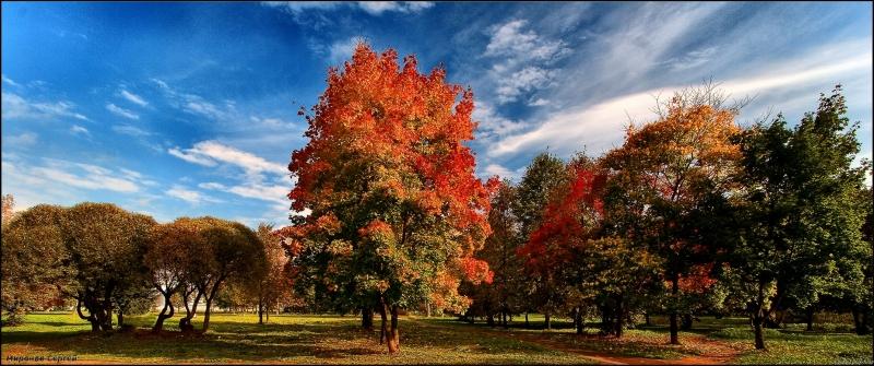Осень в Мытищах