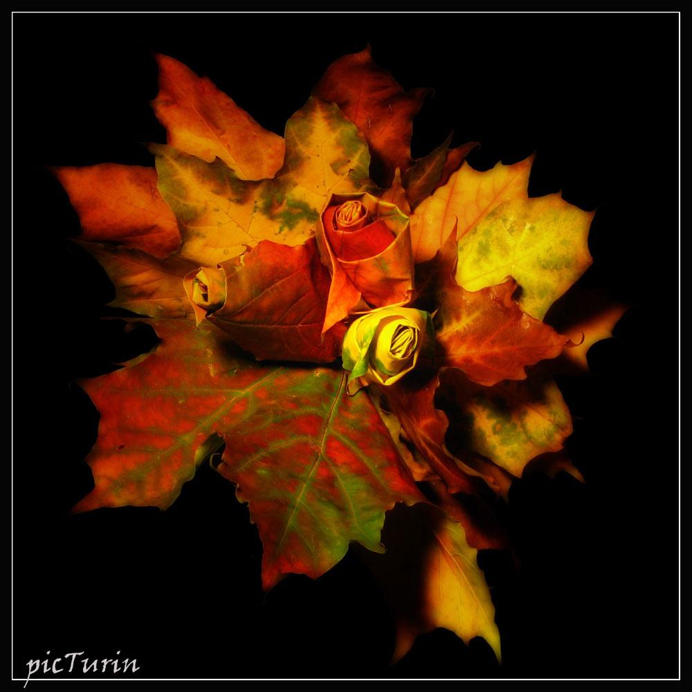 Осенний букет. | Разное | Фотография #12211