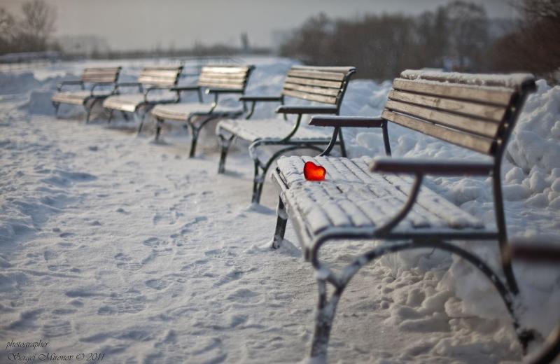 Сердце на снегу...