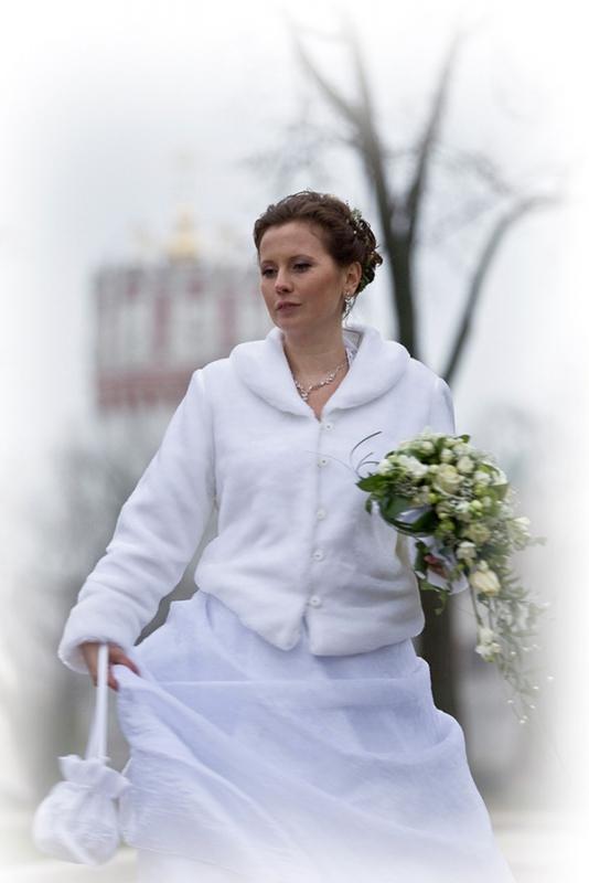 у Новодевечьего монастыря