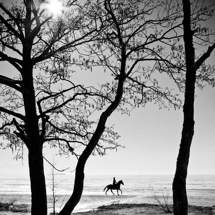 *** | Андрей Клемешов | Разное | Фотография #16202