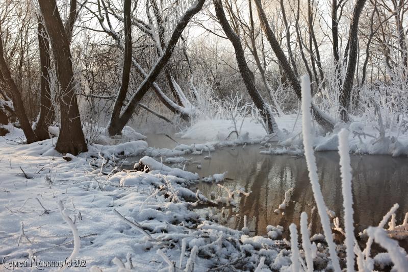 зимняя прогулка (серия)