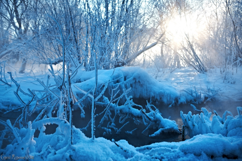 зимняя прогулка 2