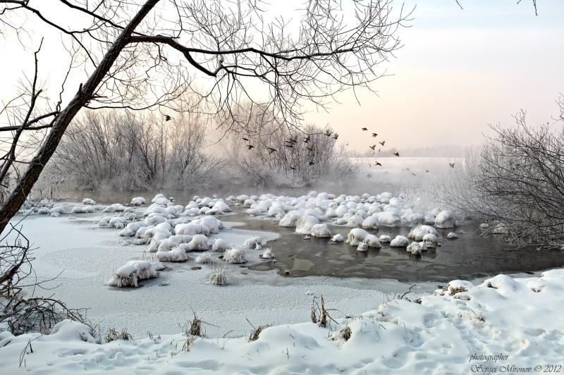 утро, февраль