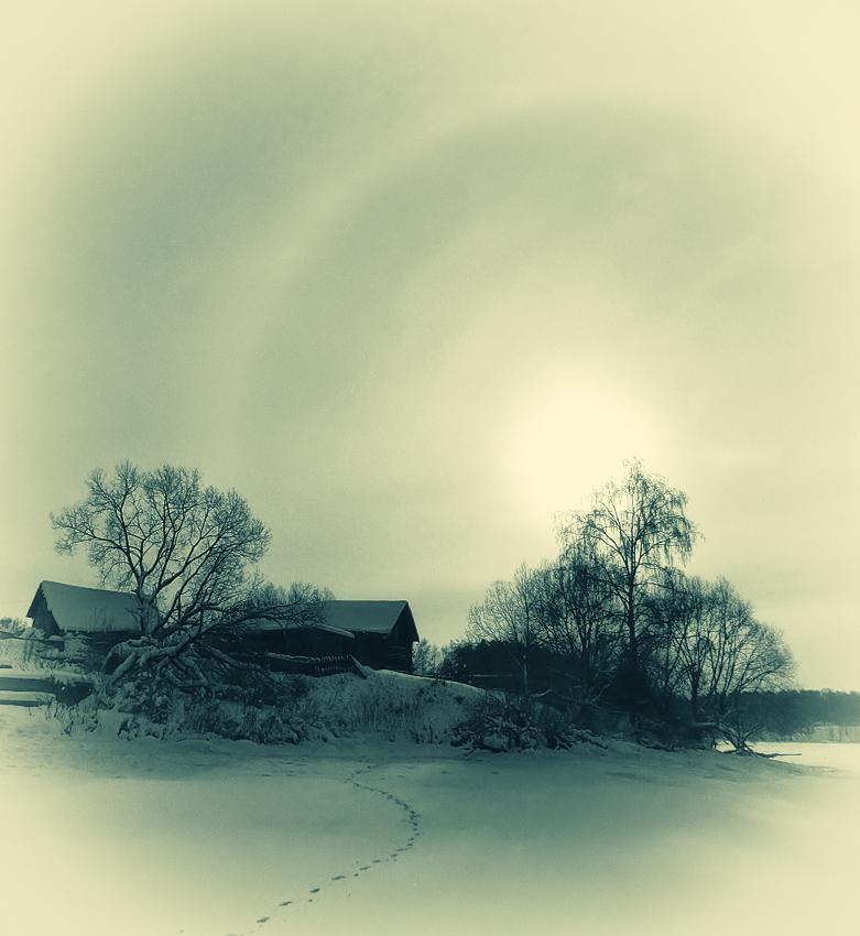 Солнцеворот | Альберт Горошко | Фотография #56607