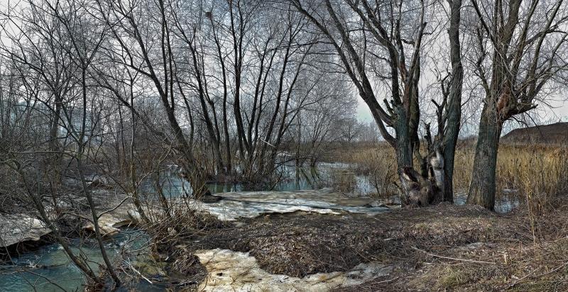 Весенний вид у реки