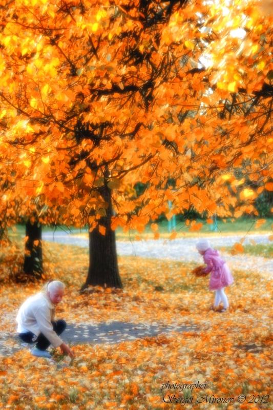 Осенние заботы