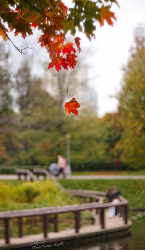 Осенний полет