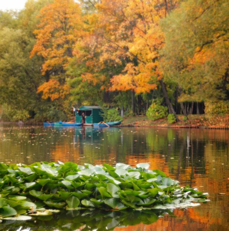 Осень на Воронцовских прудах