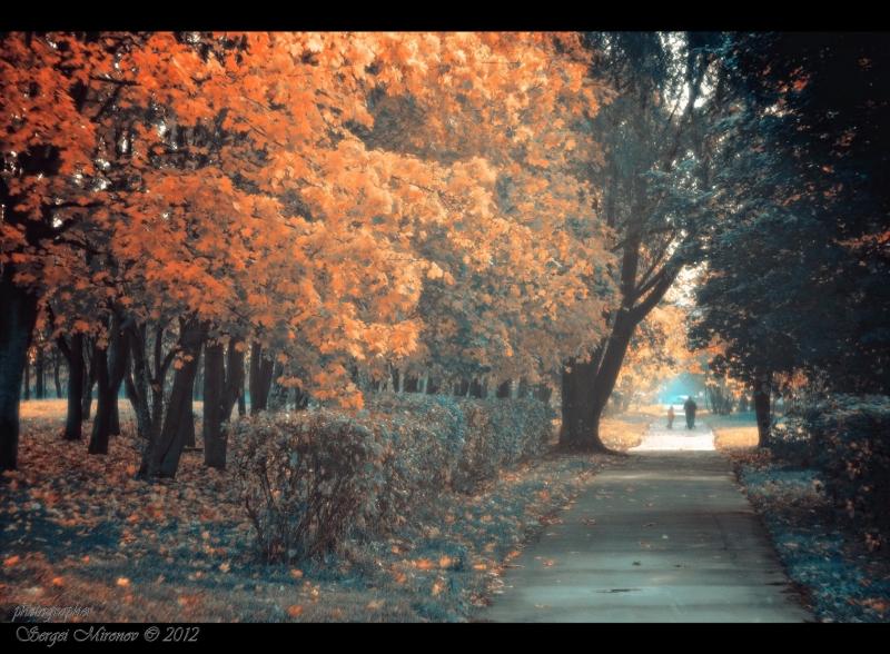 октябрьская прогулка