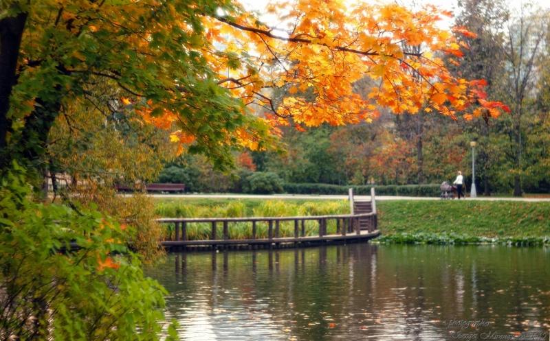 осень в Воронцовской парке