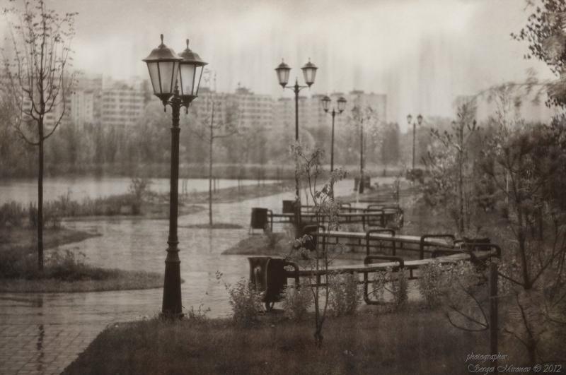 парк и дождь