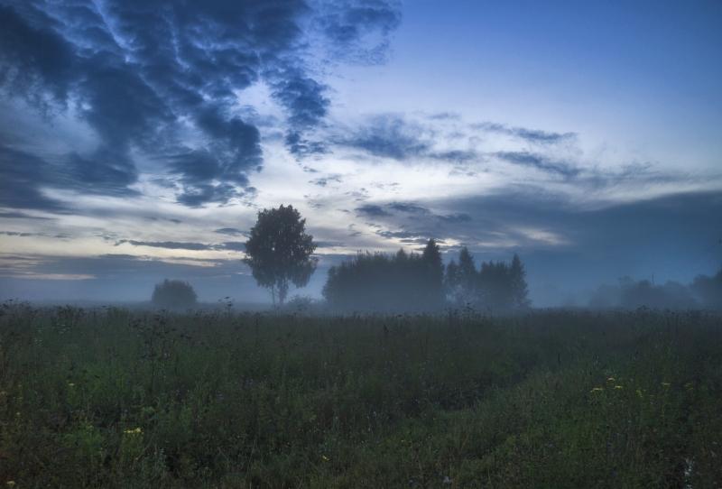 Предзакатный туман в Подмосковье