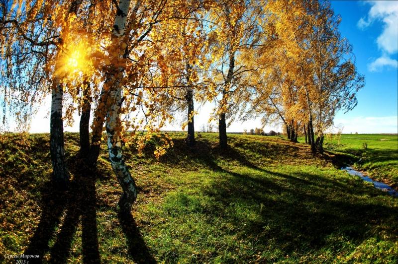 солнышко и осень