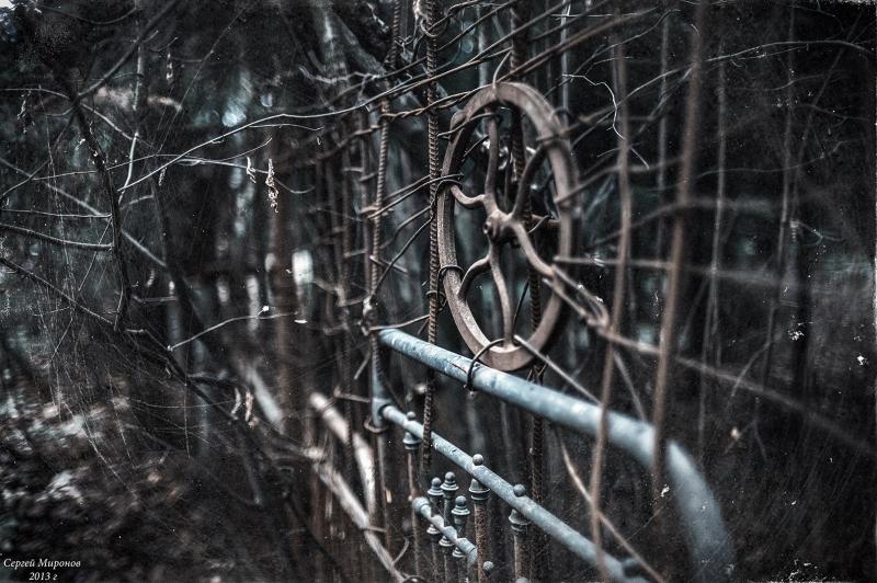 старый забор...
