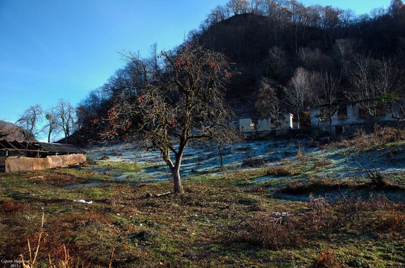 декабрь в Абхазии