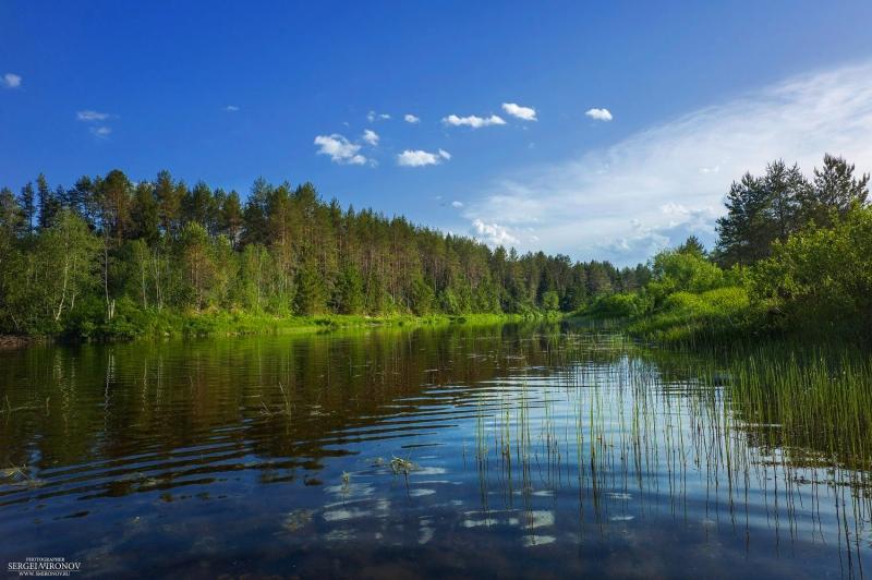 река Вага, Вологодская область