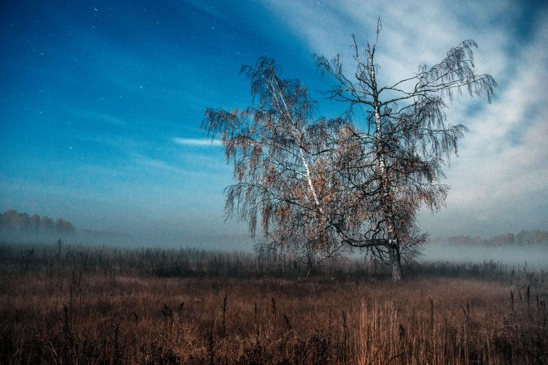 """г. Коломна """" Осенний пейзаж """""""