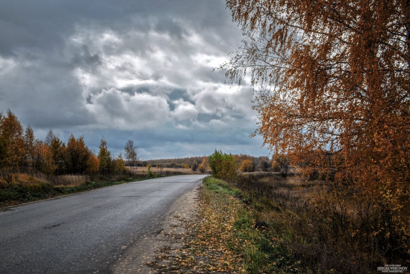 осень, пасмурно, дорога...