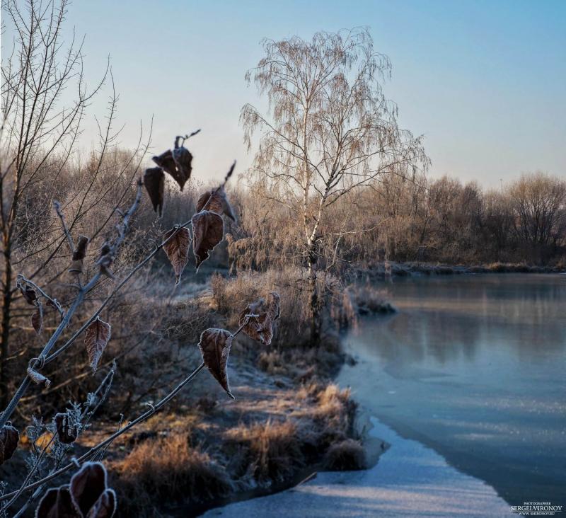 ноябрь, первые заморозки...