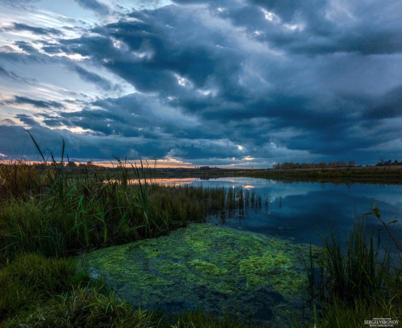 закат, болото