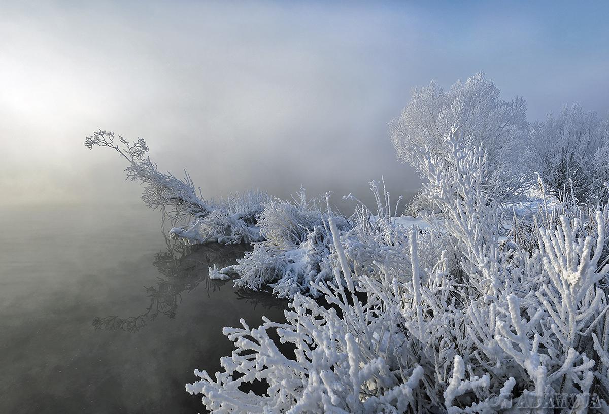 Туманы бывают разные...   Наталья Адамова   Природа   Фотография #143531