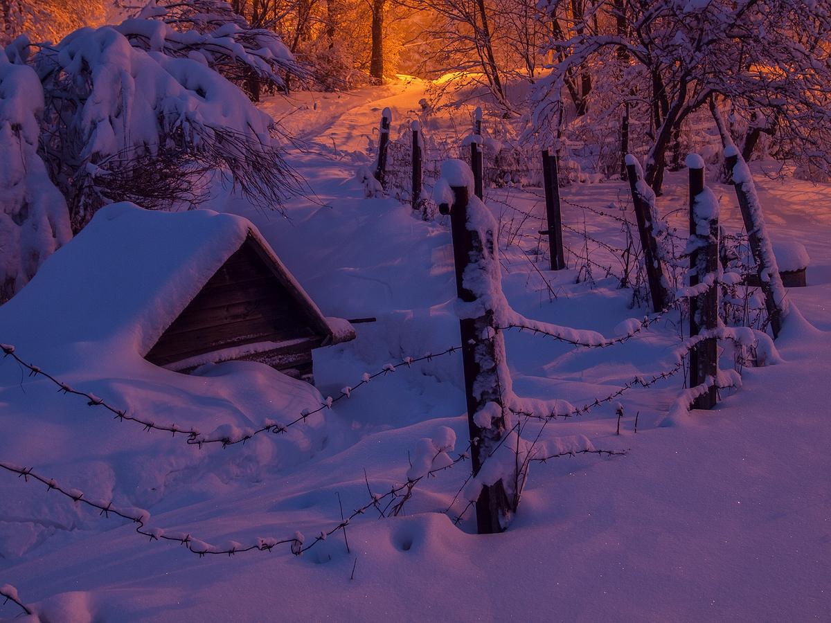 *** | Владимир Перепечаев | Природа | Фотография #144092