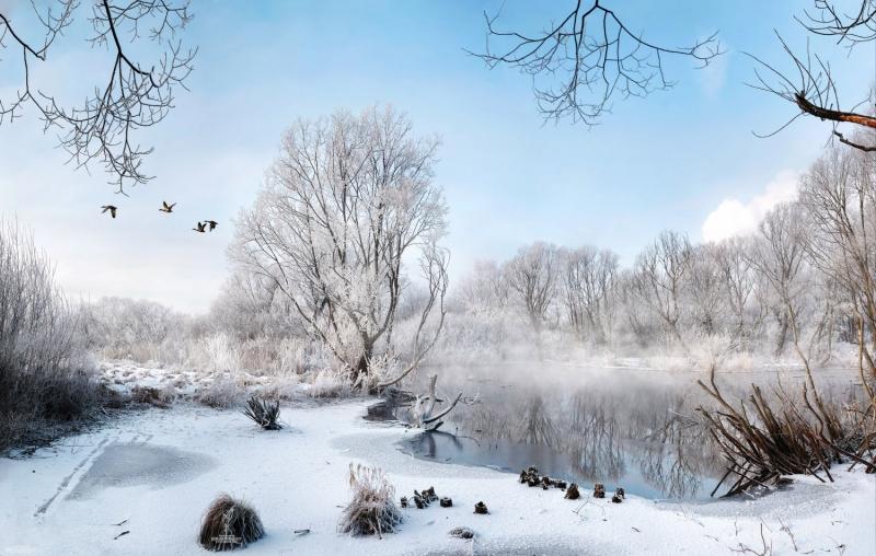 река Сукромка с летящими утками
