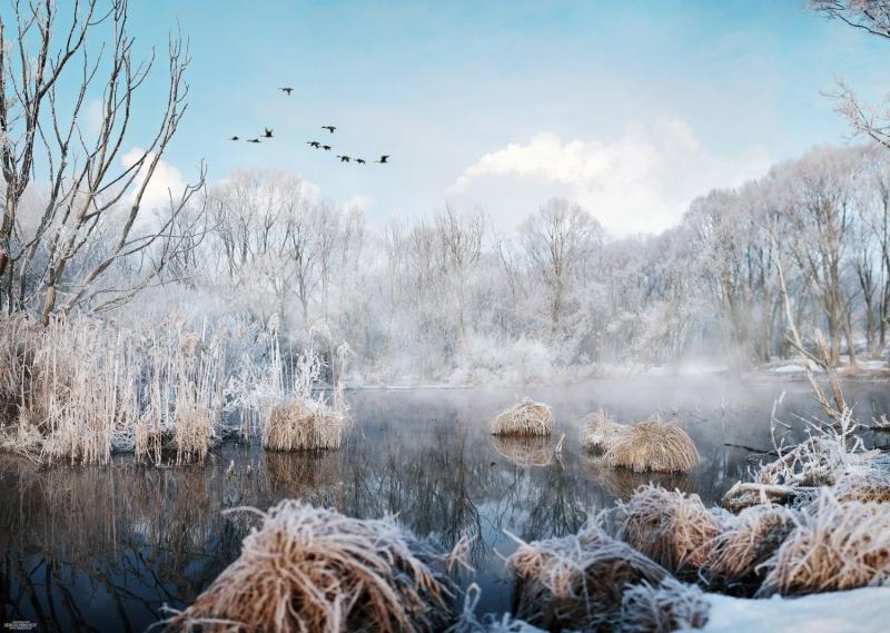 февраль на реке Сукромка