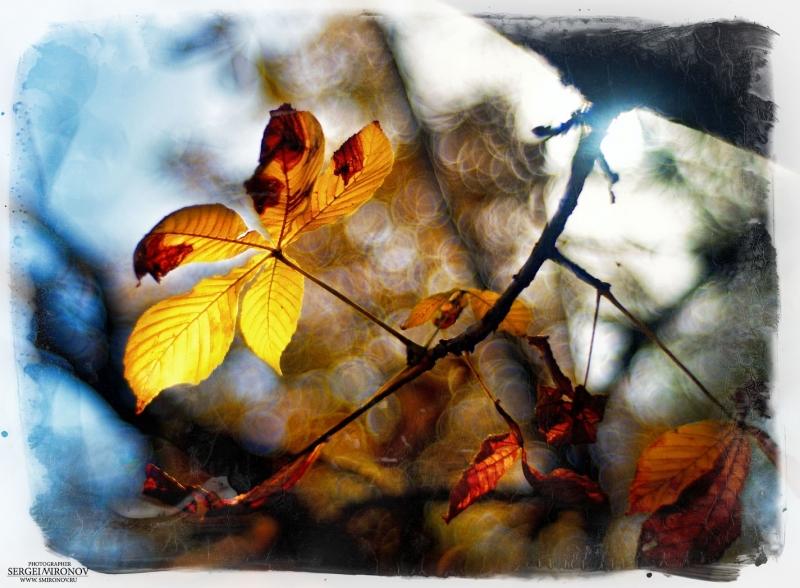Осенний вид