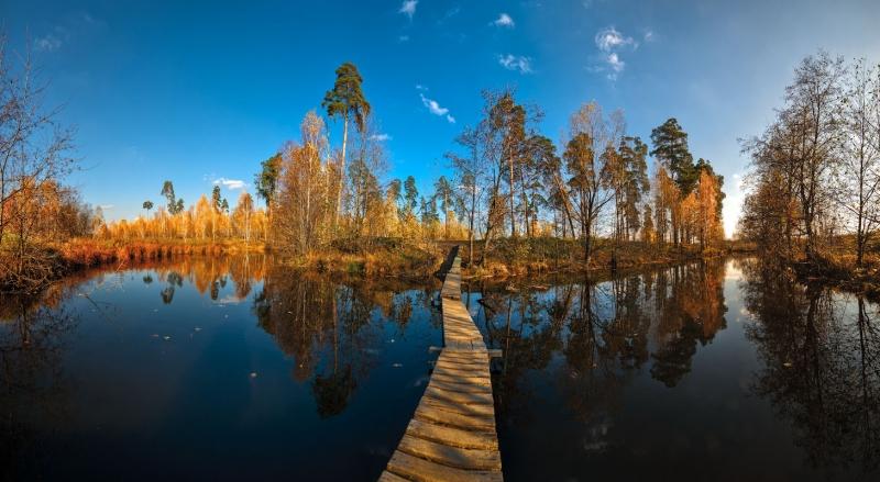 мостик в Осень