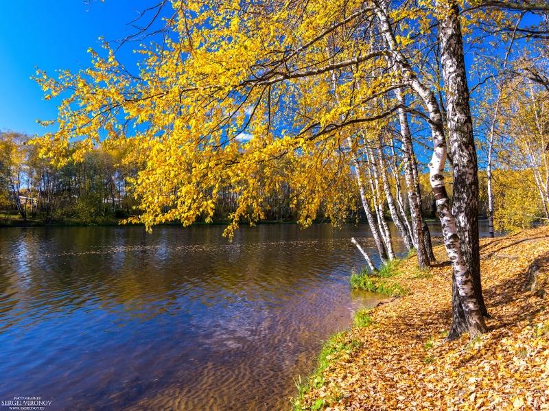 Осень. Пироговской водохранилище