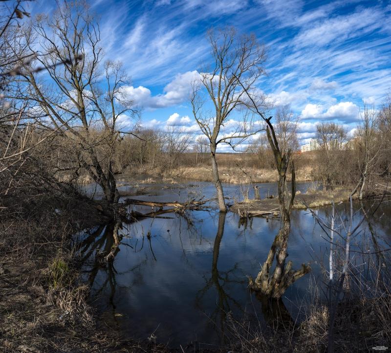 г. Мытищи. река Сукромка. весна 2020 г