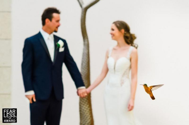 Лучшие Свадебные фотографии 2017 года поразят вас