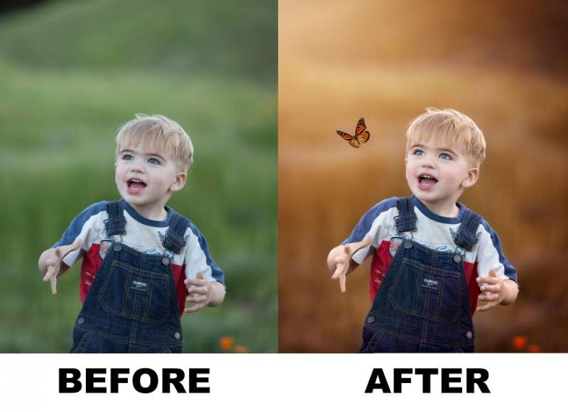 Alexa Machado использует бабочек, чтобы спасти неудачные фотографии |  INSPIDER | Статья | Текст #203616