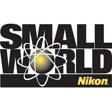 Nikon small world competition 2018