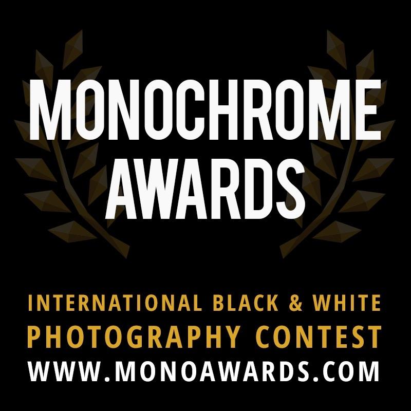 Monochrome Awards начал прием работ на конкурс 2018 года | Компания INSPIDER | Текст #204952