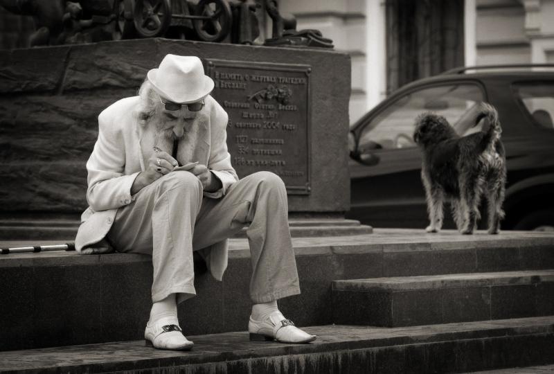 писатель и собачка