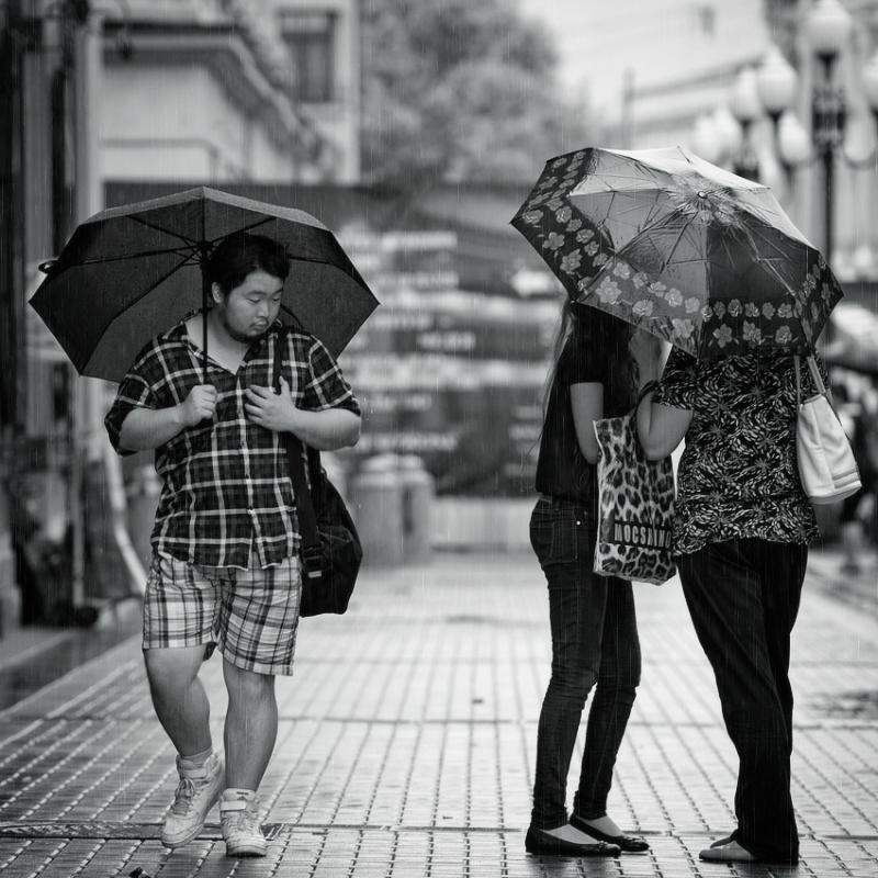 подслушав шум дождя
